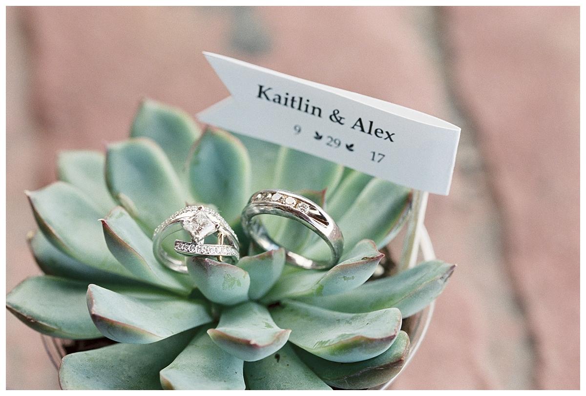 Kaitlin Alex Elegant Succulent Wedding Xsperience Photography